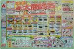 ヤマダ電機 チラシ発行日:2012/3/3
