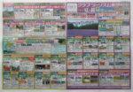 クラブツーリズム チラシ発行日:2015/6/6
