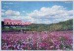 滝野すずらん丘陵公園 チラシ発行日:2012/9/16