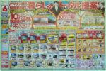 ヤマダ電機 チラシ発行日:2012/1/14