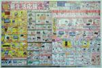 ビックカメラ チラシ発行日:2012/1/20