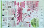 大丸札幌店 チラシ発行日:2012/3/14
