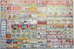 ケーズデンキ チラシ発行日:2012/3/31