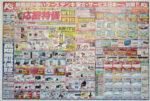 ケーズデンキ チラシ発行日:2012/4/21