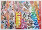 ニューステップ チラシ発行日:2012/6/28