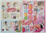 スタジオパレット チラシ発行日:2012/7/28