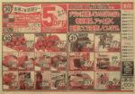 イオン チラシ発行日:2014/12/30