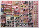 東京靴流通センター チラシ発行日:2015/1/1
