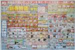 ケーズデンキ チラシ発行日:2013/1/5