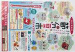 池田食品 チラシ発行日:2013/1/28