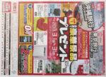 ドコモ チラシ発行日:2013/3/1