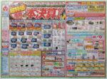 ヤマダ電機 チラシ発行日:2013/3/9