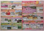 クラブツーリズム チラシ発行日:2013/5/6