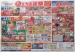 ダイエー チラシ発行日:2013/6/22