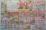 ヤマダ電機 チラシ発行日:2014/2/22