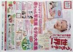 スタジオマリオ チラシ発行日:2014/4/19