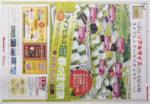 丸紅不動産 チラシ発行日:2014/5/3