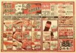 イオン チラシ発行日:2014/6/13