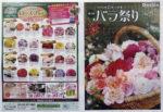 えこりん村 チラシ発行日:2014/6/28