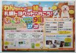 札幌トヨペット チラシ発行日:2014/9/27