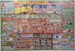 ヤマダ電機 チラシ発行日:2014/11/22