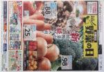 ダイエー チラシ発行日:2014/11/27