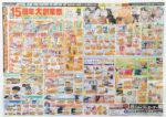 ジョイフルエーケー チラシ発行日:2016/6/29