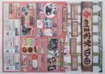 STVハウジング チラシ発行日:2015/3/14