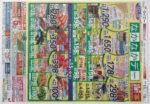 ダイエー チラシ発行日:2015/4/15