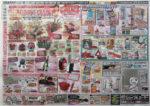 ジョイフルエーケー チラシ発行日:2015/5/6
