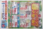 クリーニングピュア チラシ発行日:2015/5/8