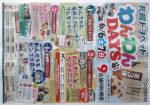 札幌トヨペット チラシ発行日:2015/6/6