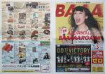 イオン チラシ発行日:2015/6/26