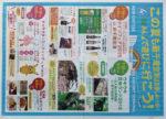 新千歳空港 チラシ発行日:2015/7/15