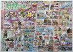 ジョイフルエーケー チラシ発行日:2015/8/5