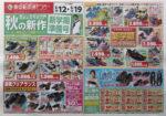 東京靴流通センター チラシ発行日:2015/8/12
