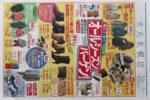 大丸札幌店 チラシ発行日:2015/8/26