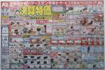 ケーズデンキ チラシ発行日:2015/8/29