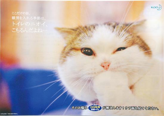 花王 チラシ発行日:2015/12/1