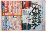 ネッツトヨタ チラシ発行日:2016/2/20