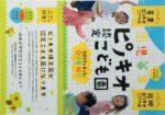 ピノキオ認定こども園 チラシ発行日:2016/10/16
