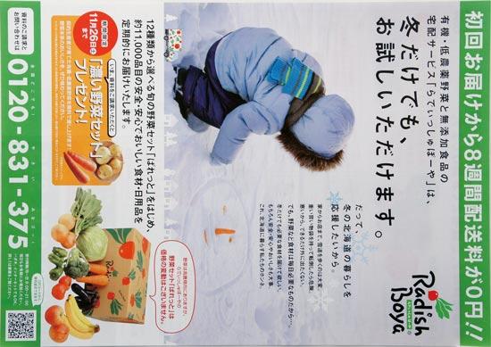 らでぃっしゅぼーや チラシ発行日:2016/11/3