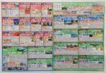 クラブツーリズム チラシ発行日:2017/3/20