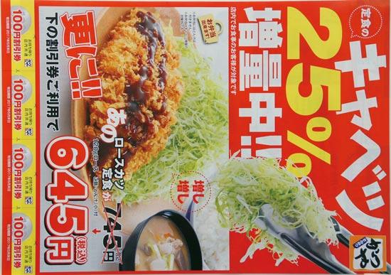 かつや チラシ発行日:2017/4/28