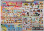 ジョイフルエーケー チラシ発行日:2017/5/24