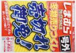 しまむら チラシ発行日:2019/2/16